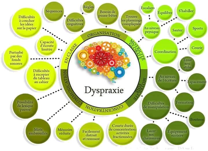 dyspraxie1